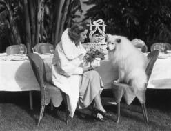 dog's birthday 1938