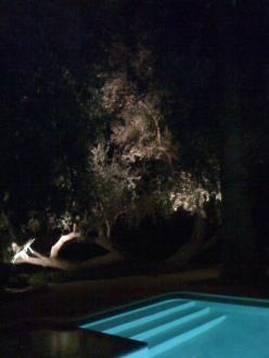 rain on the pool