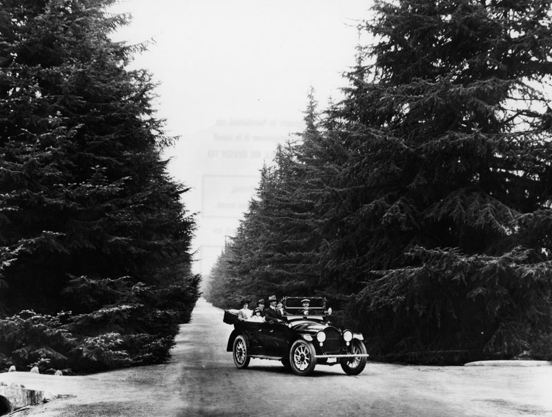 Christmas Tree Lane Altadena 1920 Beguiling Hollywood