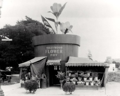 Hollywood flower pot