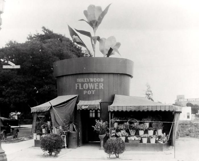 Hollywood flower pot
