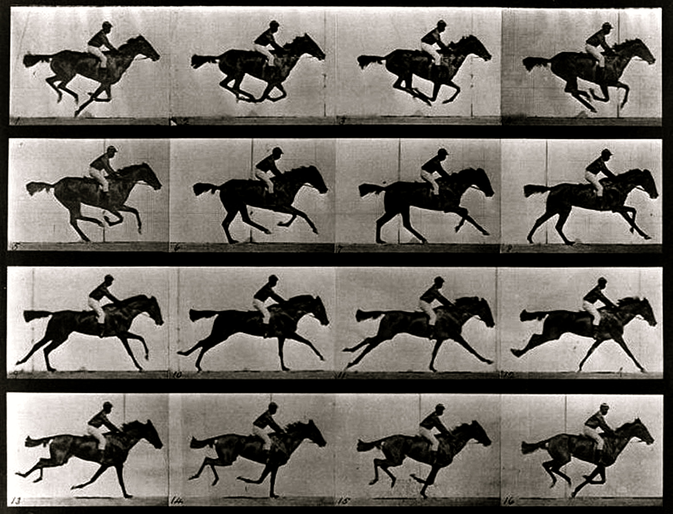 Eadweard Muybridge — one of the fathers of the motion picture ...