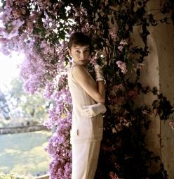 c. 1955: Audrey Hepburn, near Rome, Italy (Photo by Norman Parkinson)
