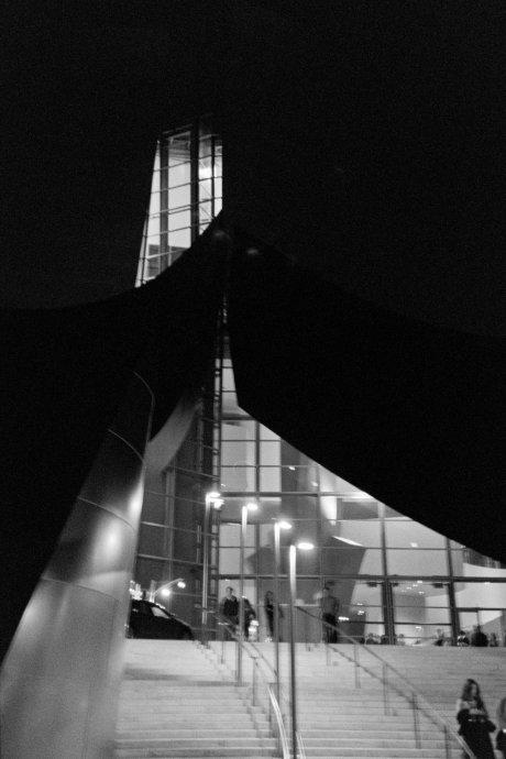 Disney Concert Hall by David McCarthy