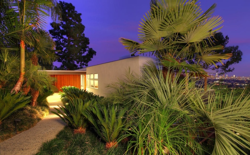 night neutra