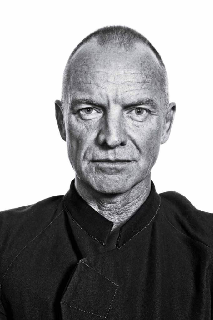 Sting portrait by David Johnson