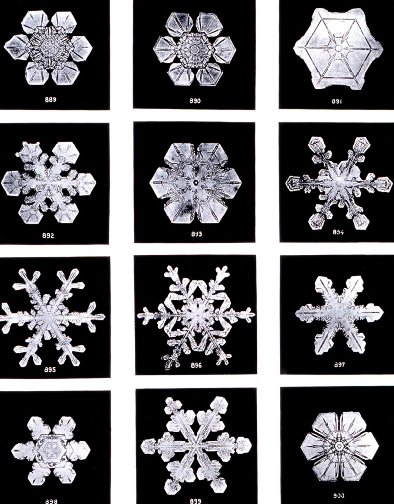 """Under the microscope, I found that snowflakes were miracles of beauty; and it seemed a shame that this beauty should not be seen and appreciated by others. Every crystal was a masterpiece of design and no one design was ever repeated., When a snowflake melted, that design was forever lost. Just that much beauty was gone, without leaving any record behind.""  Wilson A. Bentley (1865-1931)"