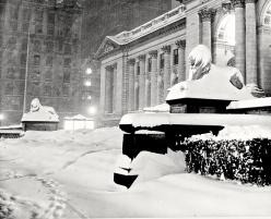 New York Public Library 1948