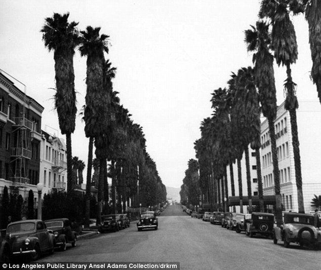 Los Angeles as photographed by Ansel Adams, circa 1940s. Image: Mail Online