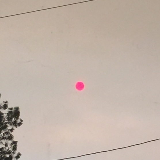 That magenta dot in the sky is the sun...