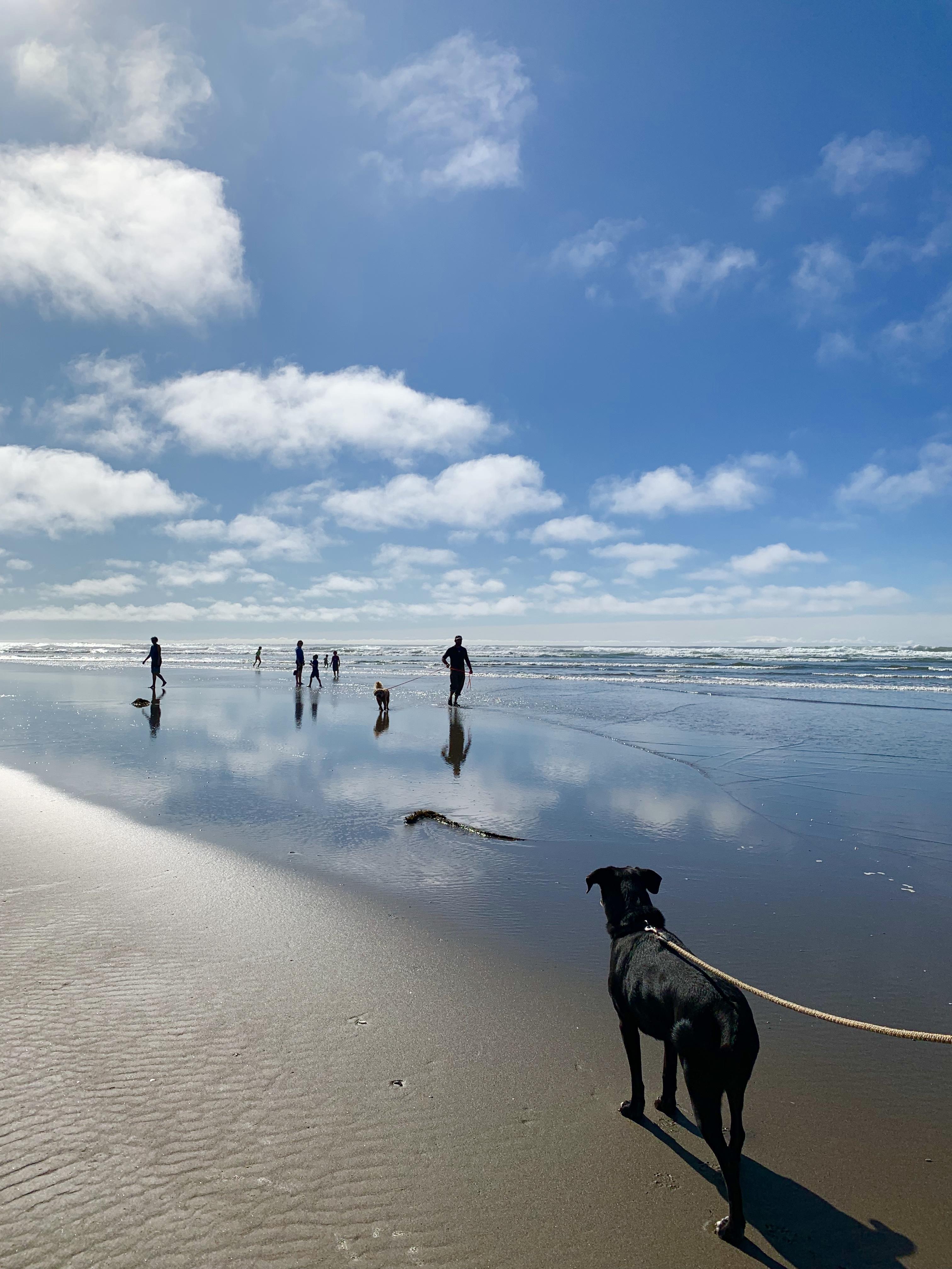 I'd prefer it if life were a beach…